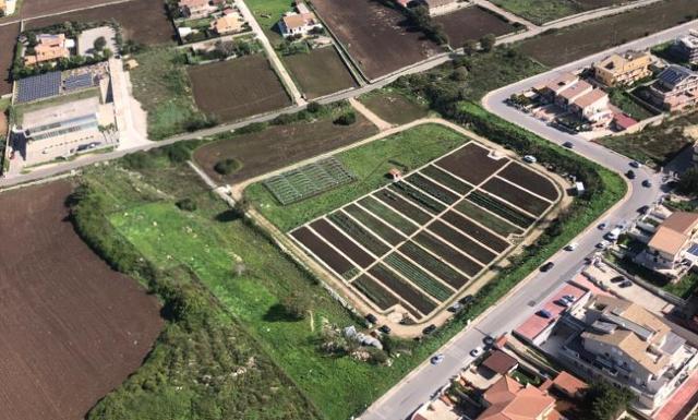 Gli orti sociali della cooperativa Proxima Ragusa continuano a riservare sorprese