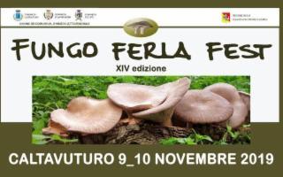 Profumi e sapori d'autunno al Fungo Ferla Fest