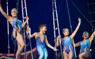 Festività magiche con lo spettacolo del Circo M. Orfei
