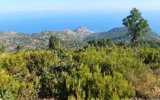 Escursione a Monte San'Angelo