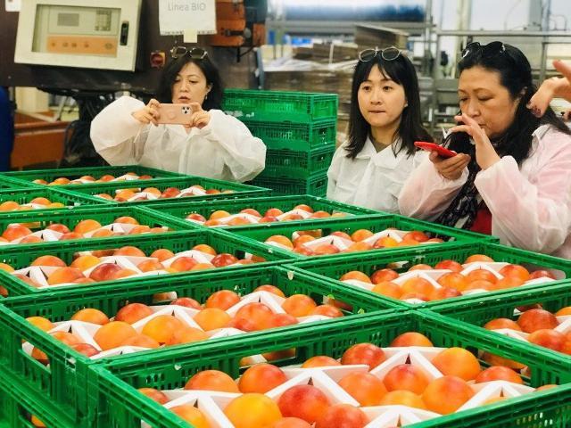 Giornalisti cinesi in visita nell'azienda Oranfrizer di Scordia (CT)