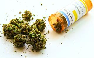 In Sicilia la cannabis terapeutica sarà gratis
