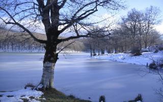 Il Parco dei Nebrodi