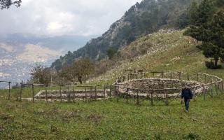 Visita al bosco della Riserva Naturale Orientata Serre della Pizzuta