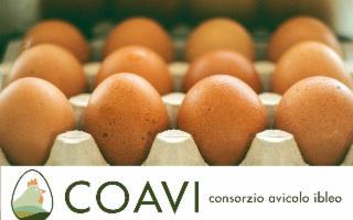 Scegliere uova locali siciliane è sinonimo di garanzia