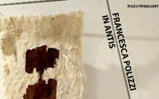 """""""In Antis"""", prima personale di Francesca Polizzi - SOSPESA"""