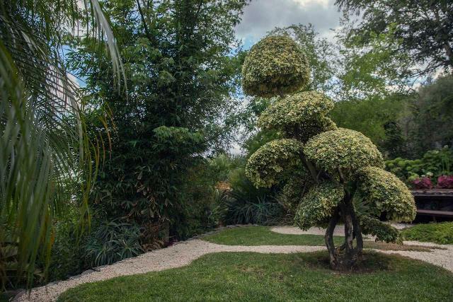 I Grandi Giardini Siciliani: una gita, dietro casa, come terapia antistress