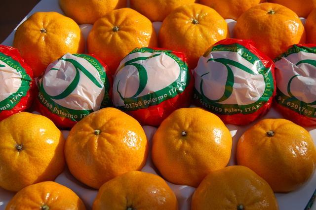 Consorzio del mandarino tardivo di Ciaculli