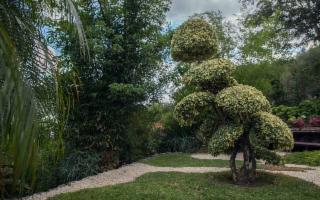 Riaprono i Grandi Giardini Siciliani: una gita, dietro casa, come terapia antistress