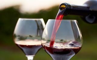 Vinorum, la festa del vino e della gastronomia sicula