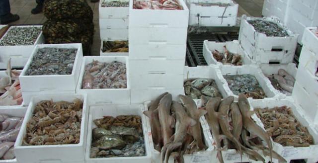 Il mercato ittico di Porticello