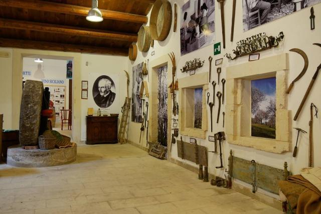 Sala del Palmeto e del Frantoio del Museo della Mandorla di Avola