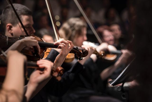 Spettacoli musicali: negli spettacolo musicali i professori d'orchestra dovranno mantenere la distanza interpersonale di almeno 1 metro.