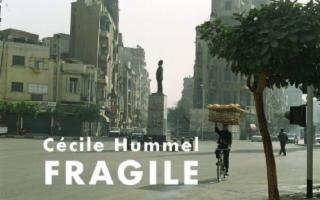 ''Fragile'' dell'artista svizzera Cécile Hummel