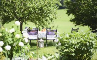 Giardini, terrazzi e balconi: la nuova passione degli italiani (ancora di più senza zanzare)