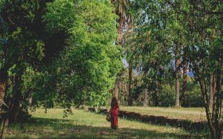 Save Diversity: nasce a Palermo un parco agri-culturale e inclusivo
