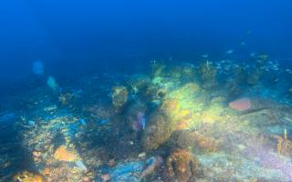 Individuato un antico relitto romano nei fondali di Ustica