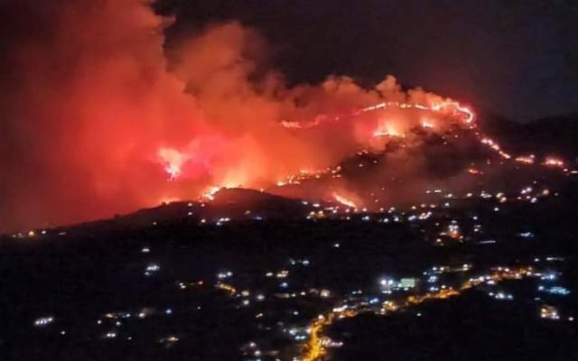 Incendio ad Altofonte, Wwf: ''Attentato al nostro territorio''