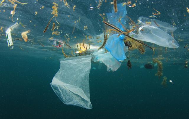 L'inquinamento maggiore finisce negli oceani e l'80% dell'inquinamento marino consiste in plastica...