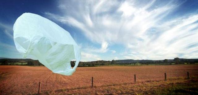 Per oggi (ma anche per domani e... per sempre) niente sacchetti di plastica, please