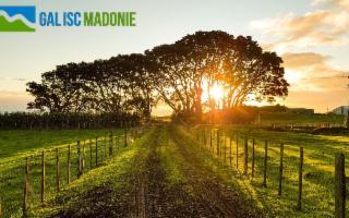 Agricoltura sociale e welfare rurale: il nuovo bando indetto dal GAL Madonie