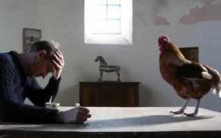 "Al Malox, ""CineAmbiente Film & Food"""