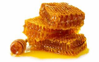 Se il miele è meglio degli antibiotici, la Sicilia è la migliore