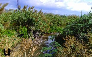 Ascoltare l'Acqua di Palermo e prendersi cura del Fiume Oreto