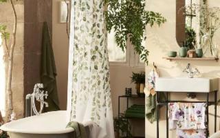 Avete mai pensato di arredare il bagno con le piante?