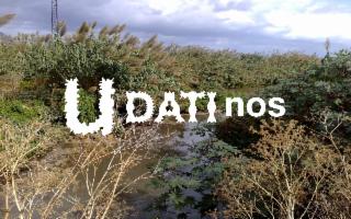 Ascoltare l'acqua di Palermo: cosa ha da dirci il Fiume Oreto