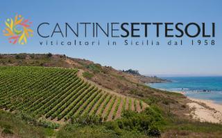 Una grande storia siciliana, quella di Cantine Settesoli