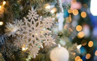 Nell'anno della pandemia, due alberi di Natale sono meglio di uno!