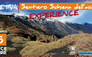 Etna - Sentiero Schiena dell'Asino Experience