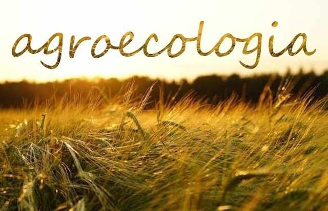 Un futuro bio per l'Agroecologia in Sicilia