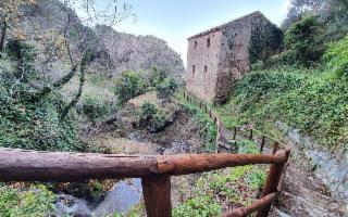 Alla scoperta guidata di Messina e dei Peloritani