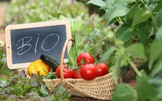 La pandemia ha scatenato negli italiani la passione per gli alimenti BIO