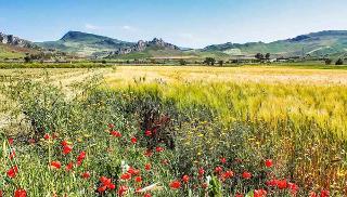 Prende forma il Primo Parco mondiale dello Stile di Vita Mediterraneo