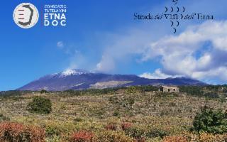Nasce l'Osservatorio Etna DOC