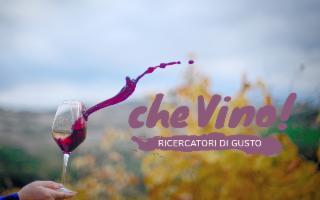 ''Che Vino'' nella zona dell'Etna!