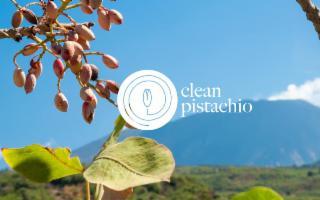 ''Clean Pistachio'', per un pistacchio buono, sostenibile e più facile da coltivare
