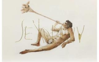 ''Sexophilia, ottanta disegni e una canzone'', di Francesco De Grandi e Daniele Franzella