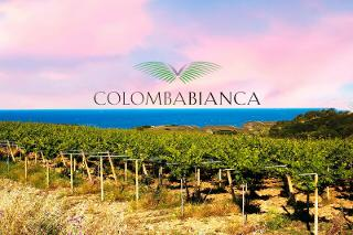 Con Colomba Bianca, la Sicilia sul podio del ''Mundus Vini Spring Tasting 2021''