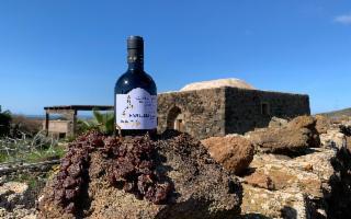 Il ''Passito della Solidarietà'' a sostegno dei futuri protagonisti della viticoltura eroica