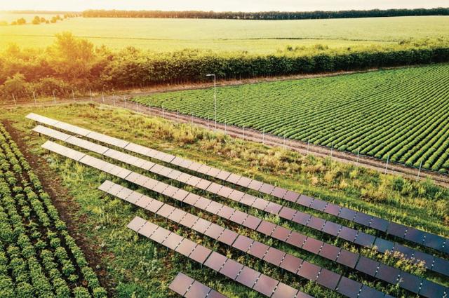 In Sicilia si progetta e si realizza l'agro-fotovoltaico del futuro