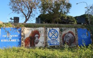 ''Vogliamo vivere!'' Arriva anche a Palermo l'azione di Extintion Rebellion