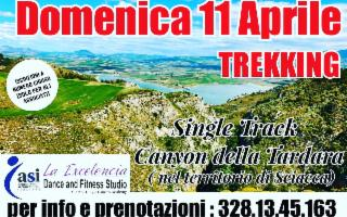 Single Track al Canyon della Tardara
