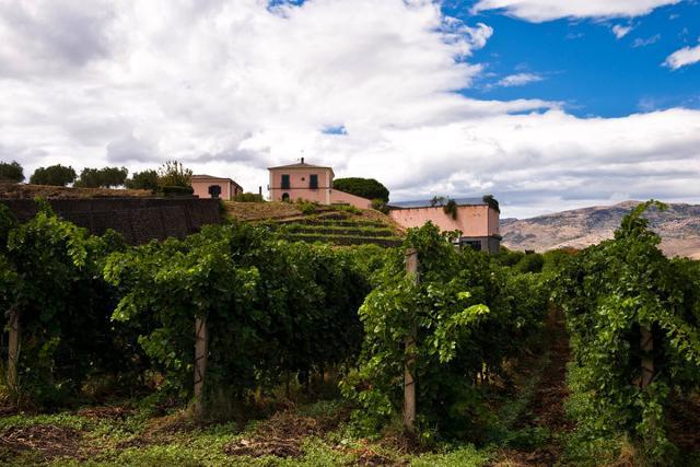 Cantina Cottanera, Castiglione di Sicilia (CT)