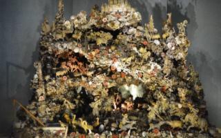Torna all'antico splendore il Presepe marino del Museo Pepoli