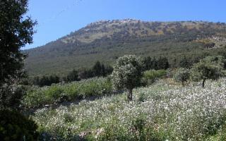 Escursione alla Riserva Naturale Integrale Grotta Conza