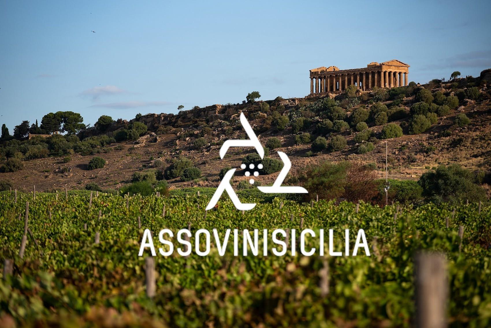 Sostenibilità, enoturismo ed export: i punti strategici di Assovini Sicilia